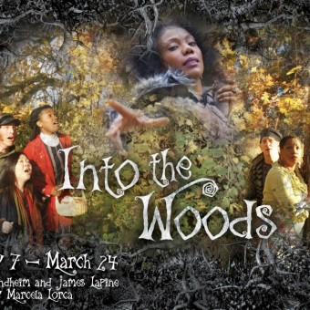 Into the Woods at Open Book