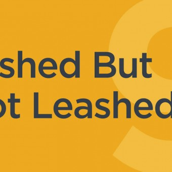 Lashed But Not Leashed