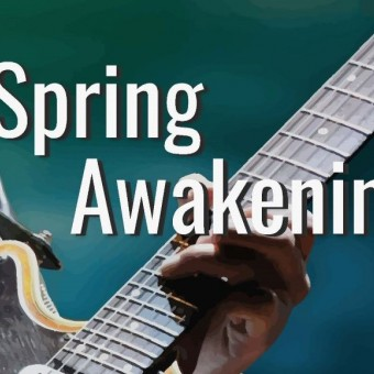 Spring Awakening Book & Lyrics by Steven Sater & Music by Duncan Sheik