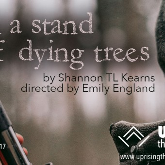 in a stand of dying trees by Shannon TL Kearns